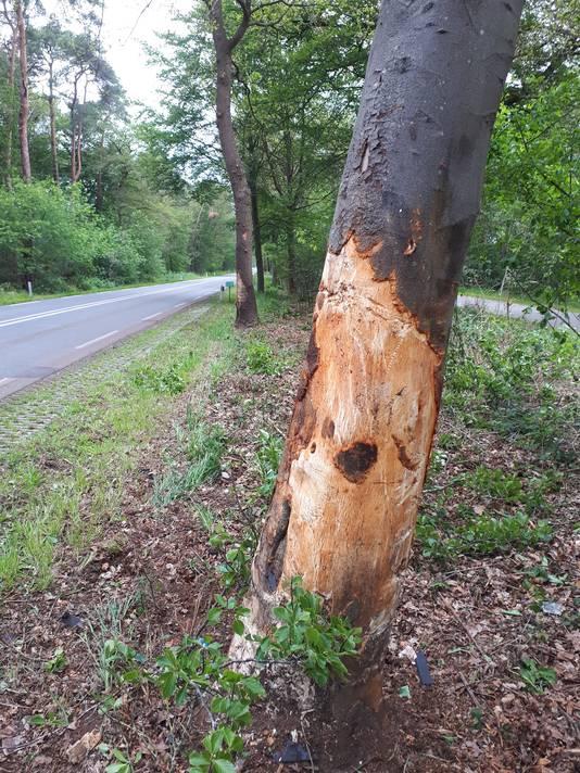 Twee bomen langs de weg van Fleringen naar Tubbergen raakten zwaar beschadigd.