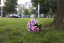 Er liggen zondagavond wat bloemen bij de plaats waar de 50-jarige Peter Stolzenbach is doodgereden.