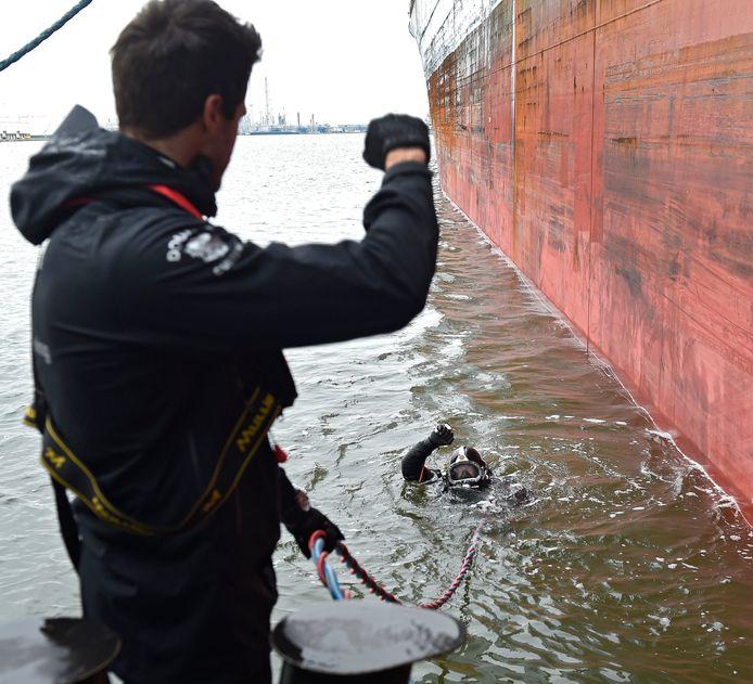De Nederlandse duikers doorzoeken holle ruimtes rond het anker en de schroeven op verborgen ladingen cocaïne.