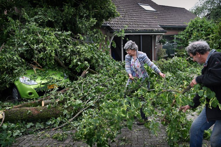 Huizen en auto's werden zwaar beschadigd door omvallende bomen. Negen mensen raakten gewond, van wie twee naar het ziekenhuis moesten. Beeld Marcel van den Bergh