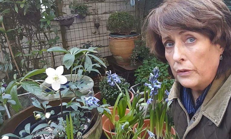 7x Wintertuin Inspiratie : Een mooie fleurige wintertuin met de tips van loes