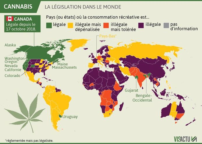 La législation dans le monde