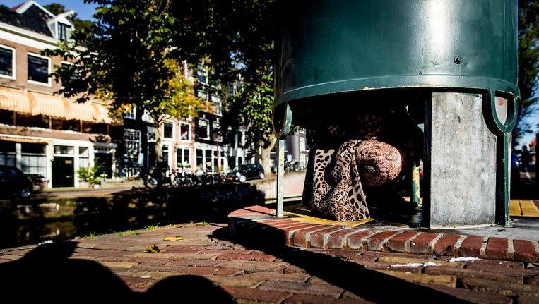 Een vrouw demonstreert het plassen op een plaskrul op het Amstelveld. Beeld anp