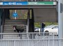 Onderzoek rond het stadion van Schalke.