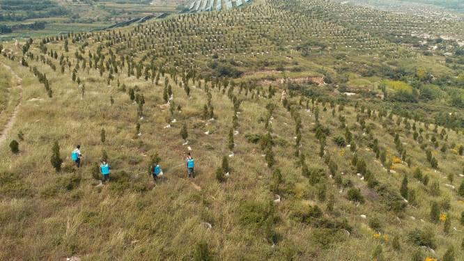 Oxfam: klimaatneutraal worden via herbebossing is rampzalig voor landbouwgrond