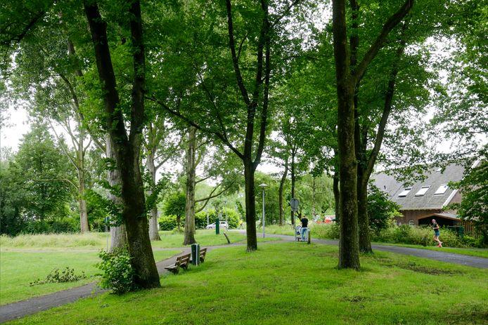Het parkje achter de Perudreef in Overvecht was in oktober 2020 de plek waar een jeugdbende een date plande met homoseksuele mannen en hen vervolgens beroofde en afperste.