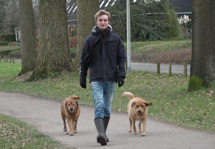 Honden uitlaten bij de Wijde Aa in Zwolle