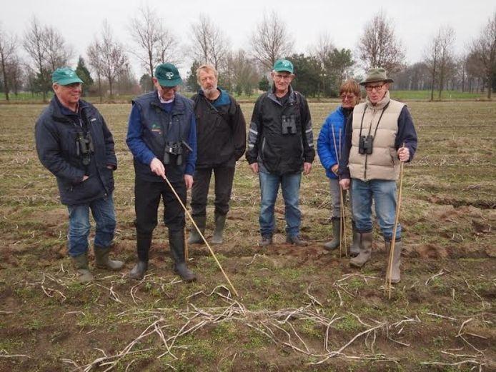 Ook vorig jaar werd het eerste Brabantse kivietsei gevonden op de Schijndelse Heide.