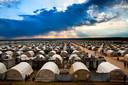 """,,Duizenden jezidi's wonen in tenten en hebben geen toekomst."""""""
