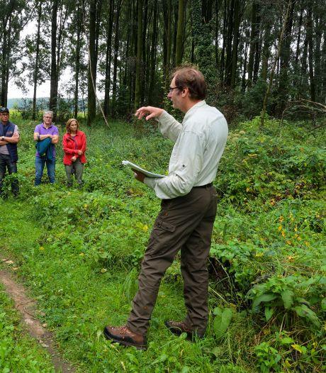 Uitleg tijdens wandeling: 'Geen kaalslag bij herstel leembossen in Boskant'