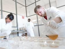 Teleurstelling en euforie over steun Eindhovense instellingen: 'Erkenning belang urban en biokunst'