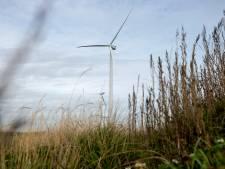 Concreet plan is er nog niet, maar Wijngaarden is alvast tegen windmolens in de polder