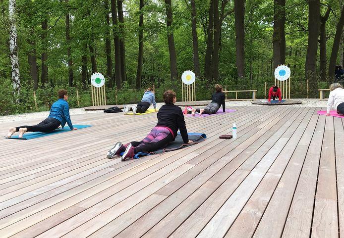 Op het Zensportplatform in het domein Sport Vlaanderen in Hofstade kan je onder meer yoga, tai chi en pilates beoefenen.