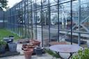 Ongeveer de helft van de zomerbar bevindt zich in een serre.
