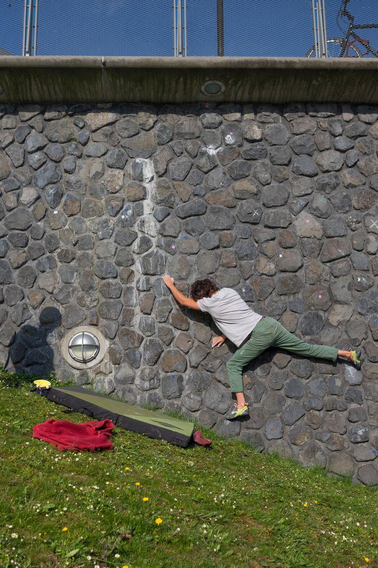 Rietlandpark Beeld Julie Hrudová