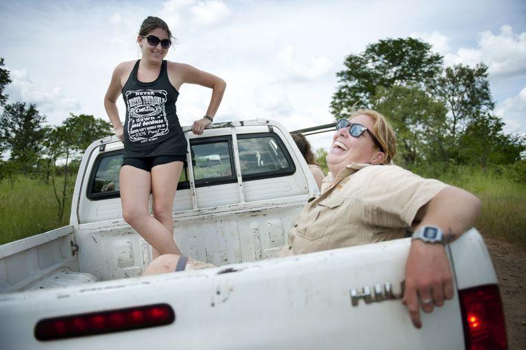 Uitrusten in de pick-up bij de leeuwen in Livingstone. Beeld An-Sofie Kesteleyn