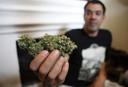 De eigenaar van een 'social cannabis club' in Montevideo toont zijn product