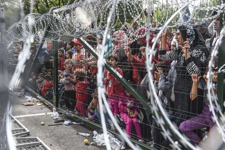 Hongarije heeft de grens afgeschermd met een hek. Beeld afp