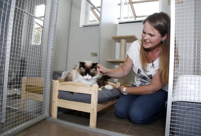 Sophie Verhassel van kattenhotel Little Buddy in Nieuw-Namen.