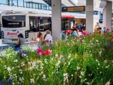 Ook Goirle wil gesprek met Arriva over minder bussen op lijn 2