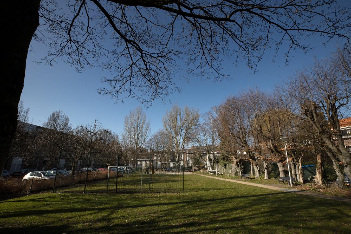 De gemeente is akkoord gegaan met een tijdelijke invulling van het Treffinaterrein in De Bergen. Dat ligt er nu troosteloos bij.