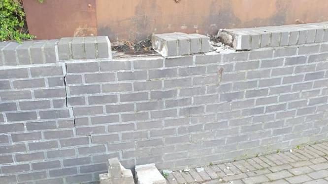 Vandalen slaan voor zoveelste keer toe in park Mariadal: stenen muur deels afgebroken