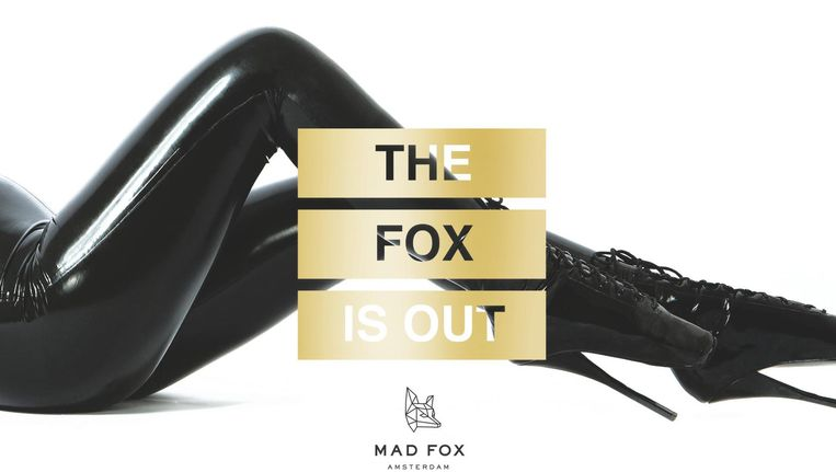 Mad Fox Beeld -