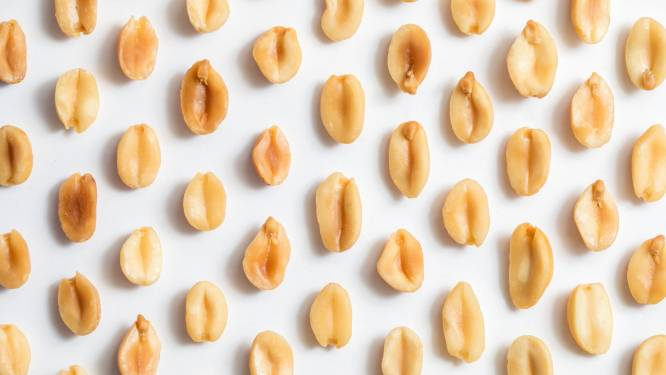 Nieuw medicijn moet pinda-allergie minder dodelijk maken