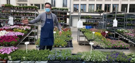 """Handelaars Bloemenmarkt willen meer bezoekers toelaten op de markt, maar: """"De federale regels laten dat niet toe"""""""