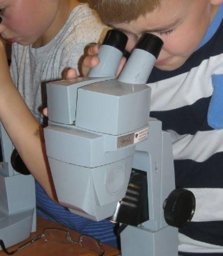 L'Aquarium-Muséum de Liège organise six stages d'été pour les jeunes aventuriers