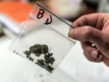 Wietlucht uit auto verraadt drugsdealers in Vermeerkwartier