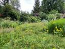 De achtertuin van Ludo