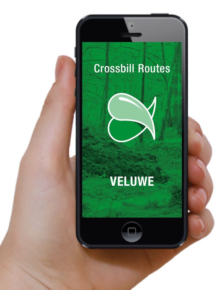 Crossbill Routes Veluwe app Beeld RF