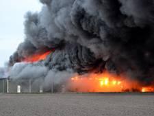 Grote brand bij champignonkwekerij in Brabant