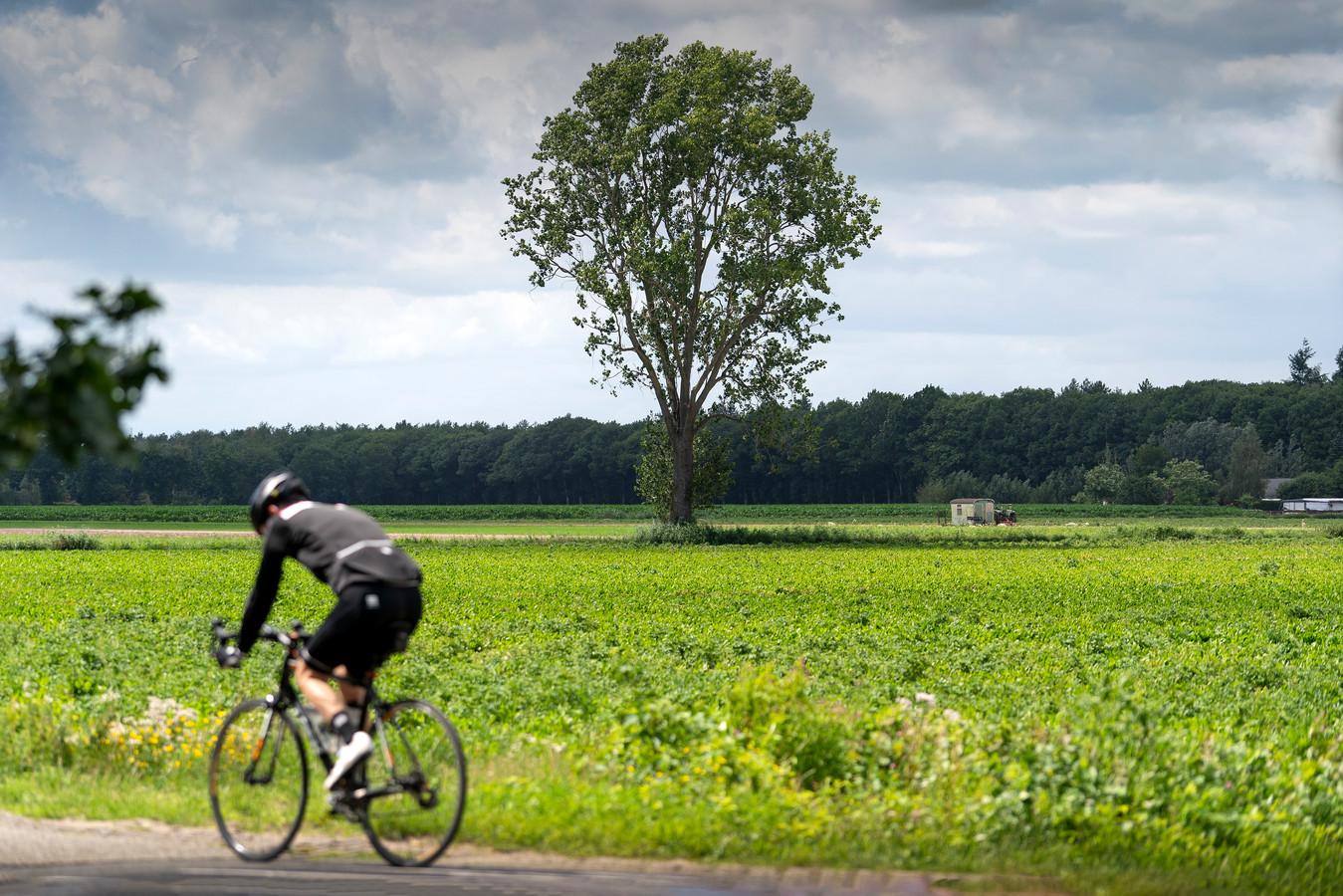 Het gebied 'De Margriet' in Helvoirt staat op een voorlopige plattegrond van de gemeente voor zonneweiden.