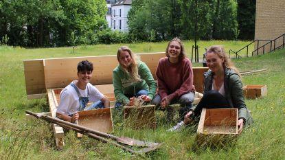Studenten Arteveldehogeschool bouwen bijenhotel in stadstuin campus Kantienberg