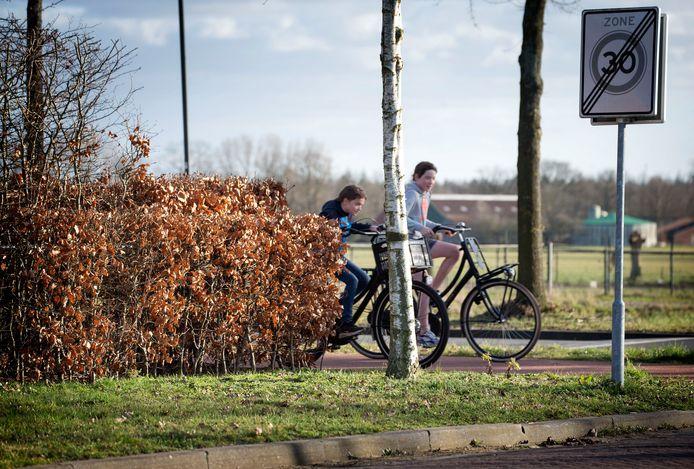 Een metershoge en een meter brede heg langs een woning op de hoek van de Roosbergseweg en de Hoge Daalakker in Bavel vormt de inzet van een hoogoplopend conflict tussen een bewoner en de gemeente Breda.