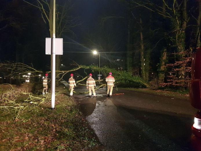 De weg bij restaurant Urbana in Zwolle werd versperd door een omgewaaide boom.