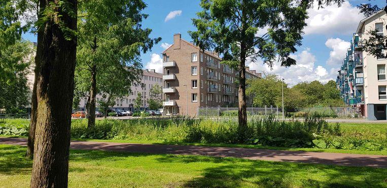 Woningen van Cornelis van Eesteren in Amsterdam-West. Beeld Monique van Dongen