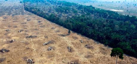 La déforestation en Amazonie se poursuit