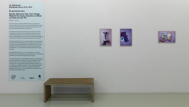 Emmeline de Mooij, Beeldende Kunst Prijs in 2014. Beeld Tom Haartsen/ Stedelijk Museum Schiedam