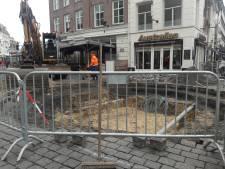 Bezwaar tegen nieuwe boom op Bossche Pensmarkt: te dicht bij kraam
