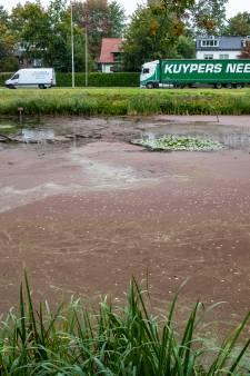 Vijvers Dimence Groep in Deventer kleuren rood door waterwoekeraar: zorginstelling grijpt in