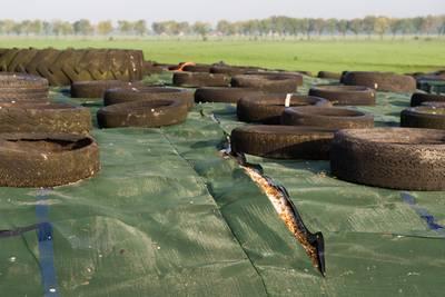 Nieuwe sabotage bij boer, dekzeil kapot gesneden