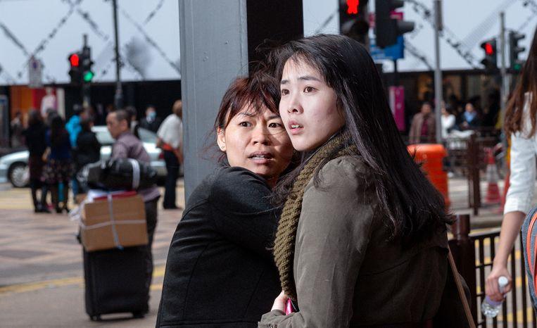 Hongkong Beeld Bas Losekoot