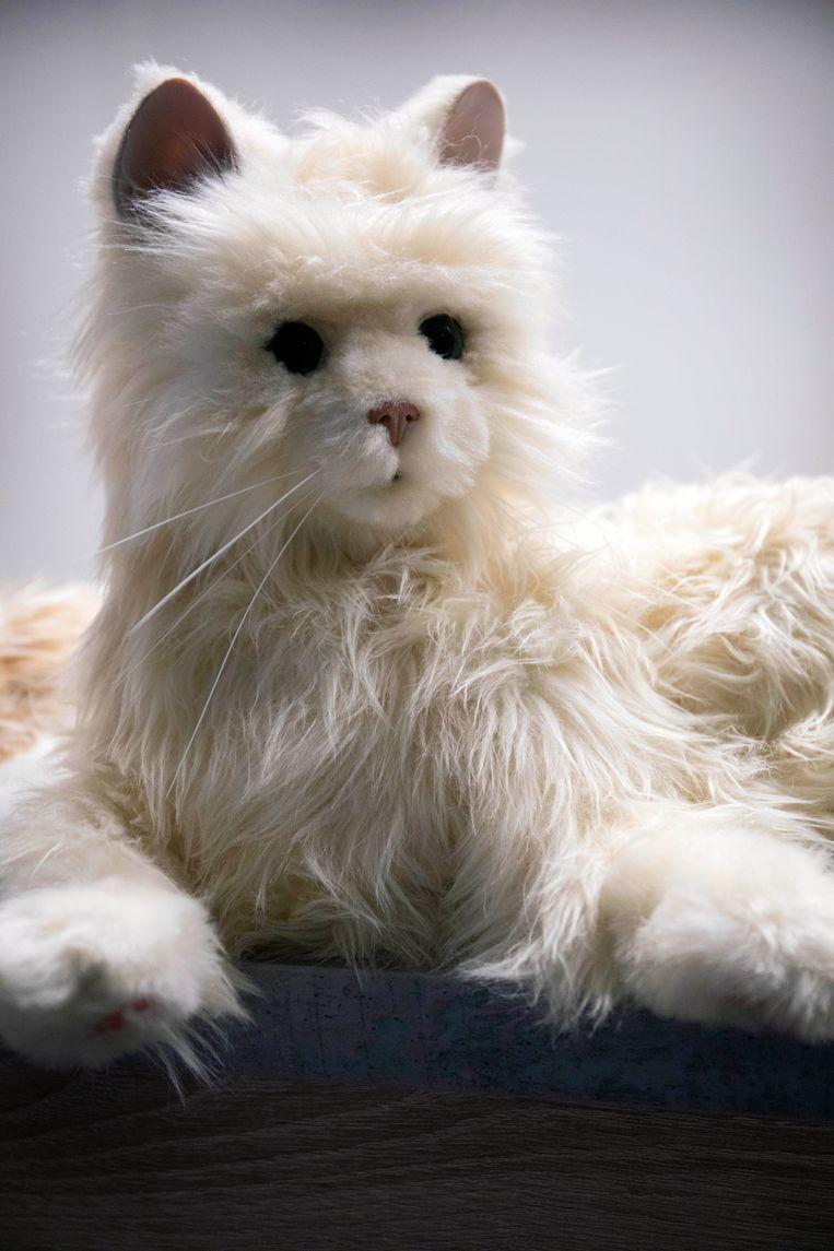 Zorgrobot in de vorm van een kat. Beeld Werry Crone