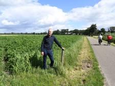Rechter kijkt naar zonnepark Beeksedijk: zijn alle procedures goed gevolgd?