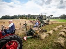 Met 'de Stoefkist' ouderwets de rogge binnenhalen voor jaarlijkse oldtimerdag in Saasveld