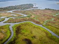 'Het is te druk bij natuurgebieden en bezoekers lappen regels aan hun laars'