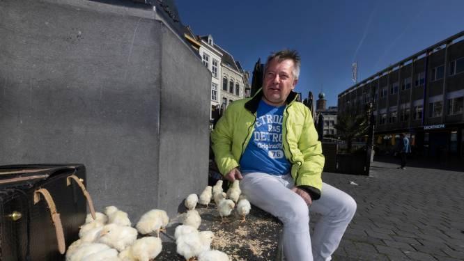 Sjoerd raakte alles kwijt en laat nu 35 hanenkuikens los in de tuin van burgemeester Bruls: 'Ze duwen me het ravijn in'